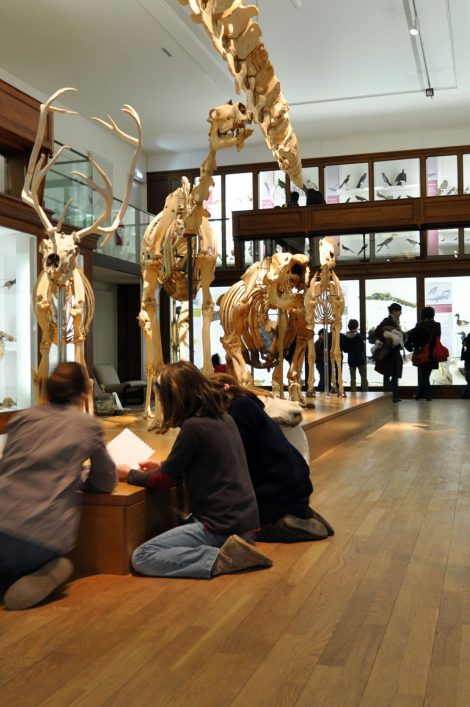 Galerie Museum